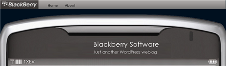 BlackBerry Software Blog Image